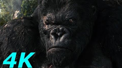 Kong Battles The V-Rexes - King Kong-(2005) Movie Clip Blu-ray HD