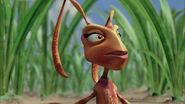 Ant-bully-disneyscreencaps.com-3003