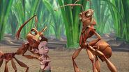 Ant-bully-disneyscreencaps.com-3159