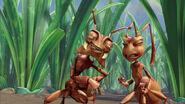 Ant-bully-disneyscreencaps.com-3048