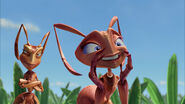 Ant-bully-disneyscreencaps.com-3382