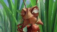 Ant-bully-disneyscreencaps.com-3168