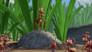 Ant-bully-disneyscreencaps.com-3108