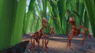 Ant-bully-disneyscreencaps.com-497