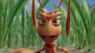 Ant-bully-disneyscreencaps.com-3000