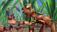 Ant-bully-disneyscreencaps.com-3100