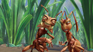 Ant-bully-disneyscreencaps.com-3047