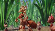 Ant-bully-disneyscreencaps.com-3073