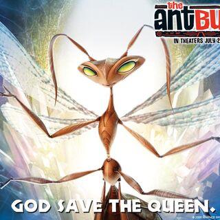 The Queen Ant Wallpaper