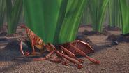Ant-bully-disneyscreencaps.com-485