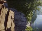 Last Sentinel