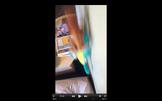 Screen Shot 2016-07-28 at 3.27.59 PM