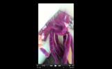 Screen Shot 2016-07-25 at 7.51.43 PM