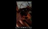 Screen Shot 2016-07-24 at 2.42.41 PM