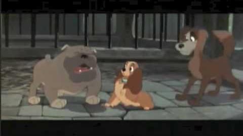 Hercules as a Puppy S1 Part 5
