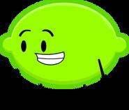 LimePose