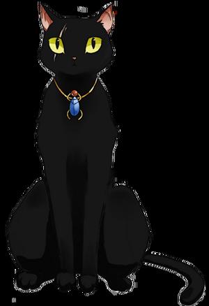 Cat-neutral-full-v1