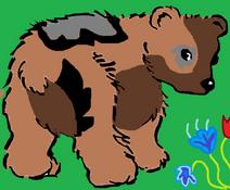 NiedźwiedzicabyCleo