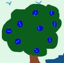 Drzewojagodowebycleo
