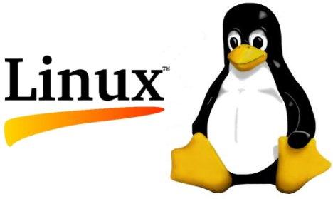 File:Linux-logo.jpg