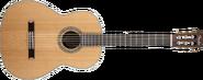 Fender FC-100