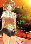 Bunny Girl Senpai v4 manga poster