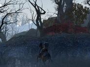 Frostswamp 3