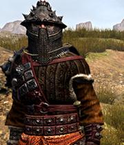 Faction armor