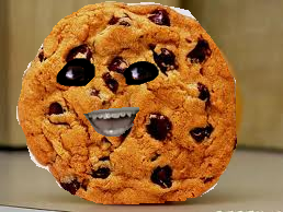 File:Cookie.png