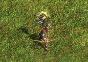 Legendary Arrow Knight