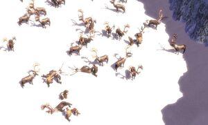 Russian Caribou Hunt