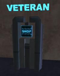 Veteran2