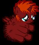 I haz a fluffy