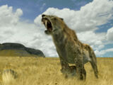 Sabre-Toothed Cat and Roar