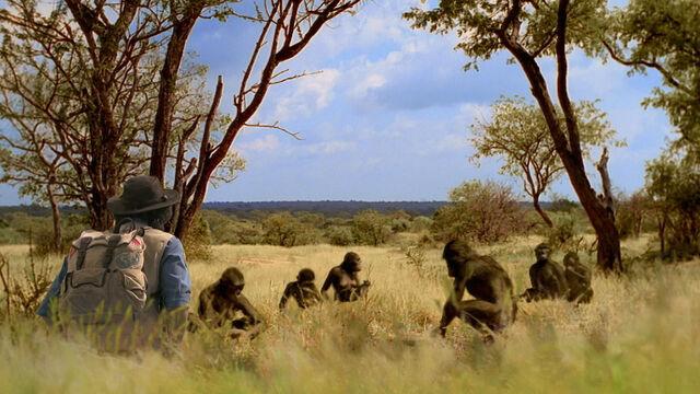 File:APA-AndyandAustralopithecus.jpg