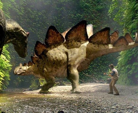 File:ADA-StegosaurusProfile.jpg