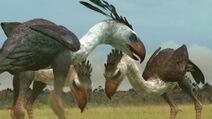 APA-TerrorBirds