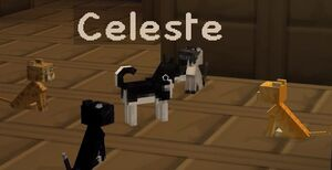 Celeste and cats