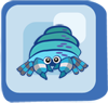Fish Electric Blue Hermit Crab