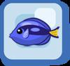 Fish Blue Tang