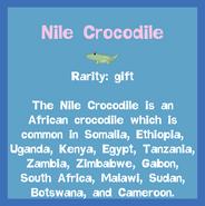 Fish2 Nile Crocodile
