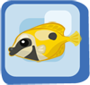 Fish Bicolor Foxface Rabbitfish