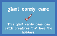 Rod Giant Candy Cane 2