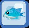 Fish Blue-green Chromis