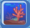 BG Coral Garden