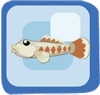 Fish Rhinogobius Zhoui