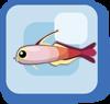 Fish Firefish