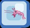 Fish Pink Sakura Shrimp