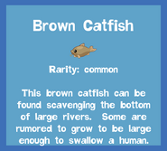 Fish2 Brown Catfish
