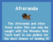 Fish2 Afroranda